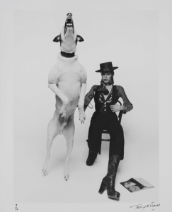 Promotional photograph of David Bowie for Diamond Dogs, 1974. Photo: Terry O'Neill. Image © Victoria and Albert Museum.